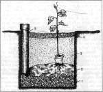Рис. 30