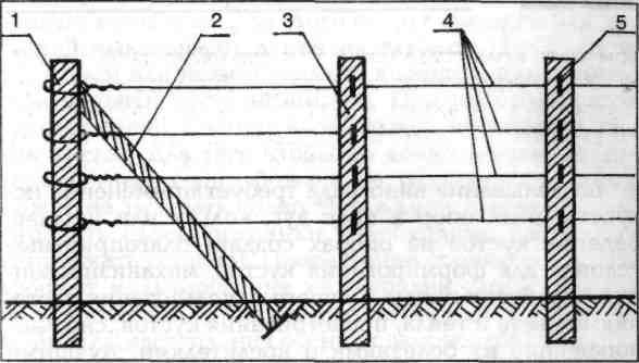Схема простейшей шпалеры для растений из веток.