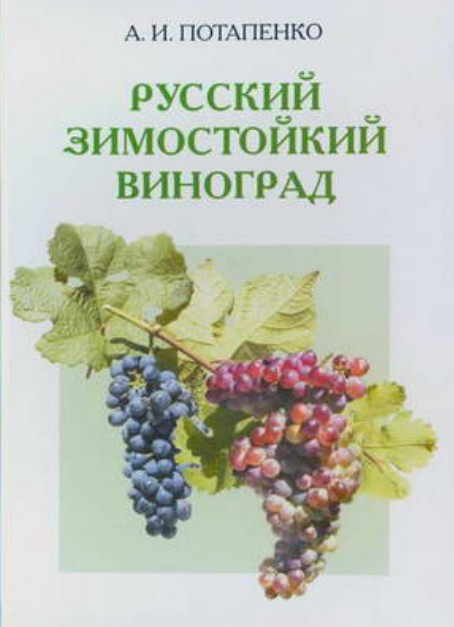 http://kuban-grape.ru/images/2010/01/d180d183d181d181d0bad0b8d0b9-d0b7d0b8d0bcd0bed181d182d0bed0b9d0bad0b8d0b9-d0b2d0b8d0bdd0bed0b3d180d0b0d0b4.jpg